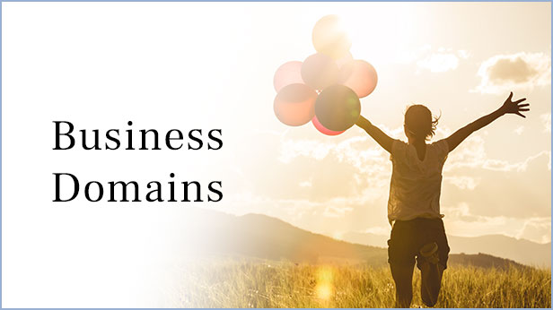 Business Domains